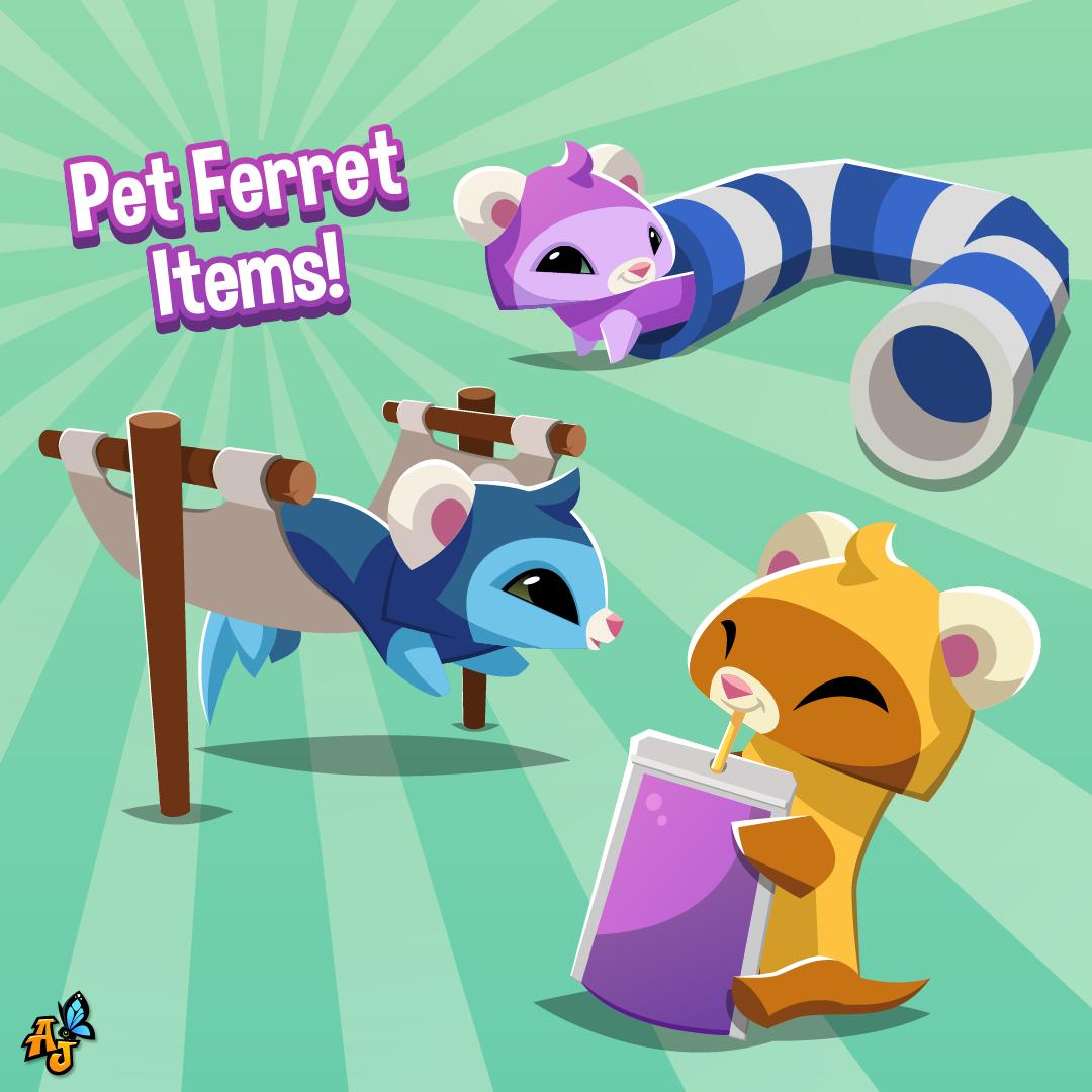 20210504 Pet Ferret & Pet Ferret Items-01