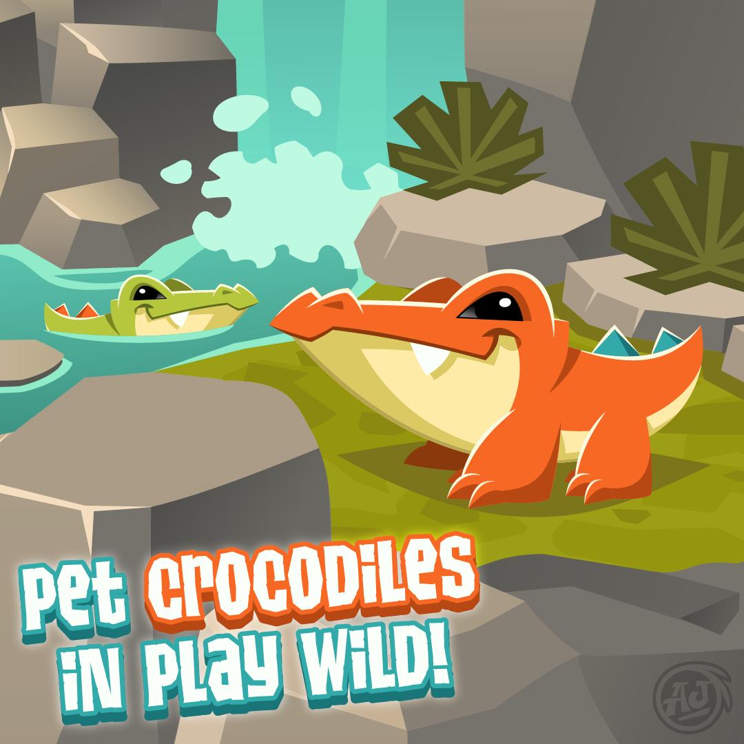 20190605 PW CrocodilePet-01