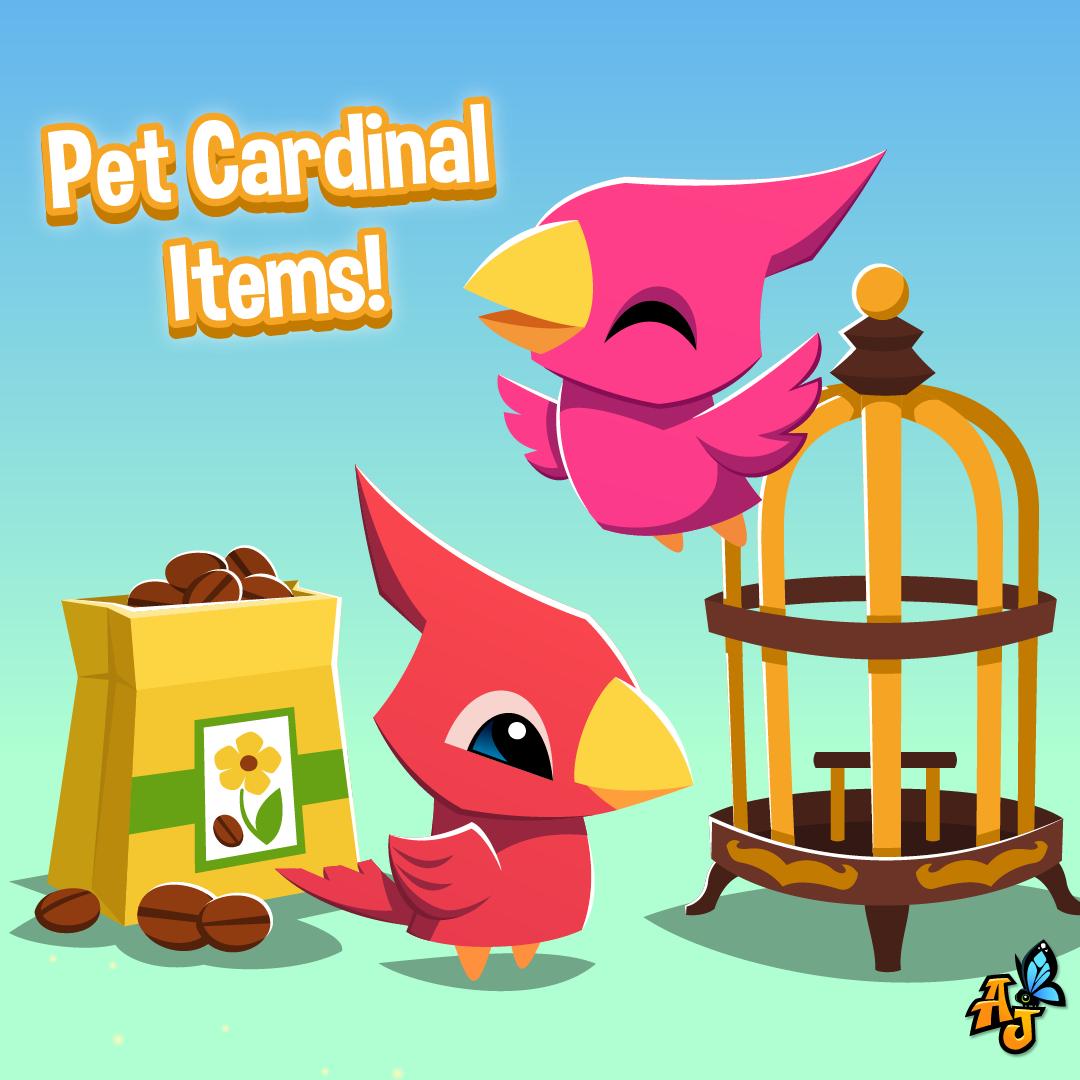 Pet Cardinals