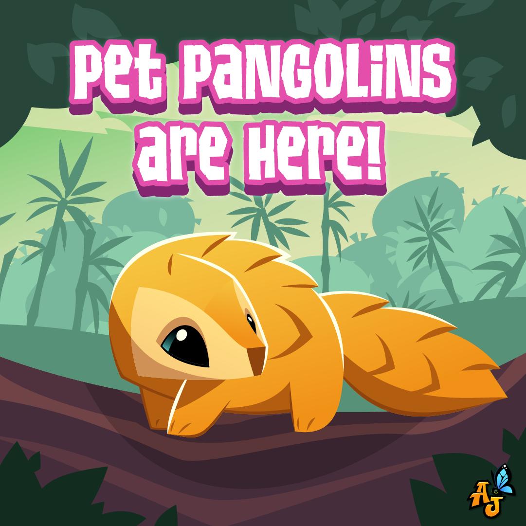 20200909 AJ Pet Pangolin AJ