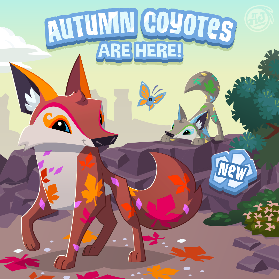 20180816 AutumnCoyote
