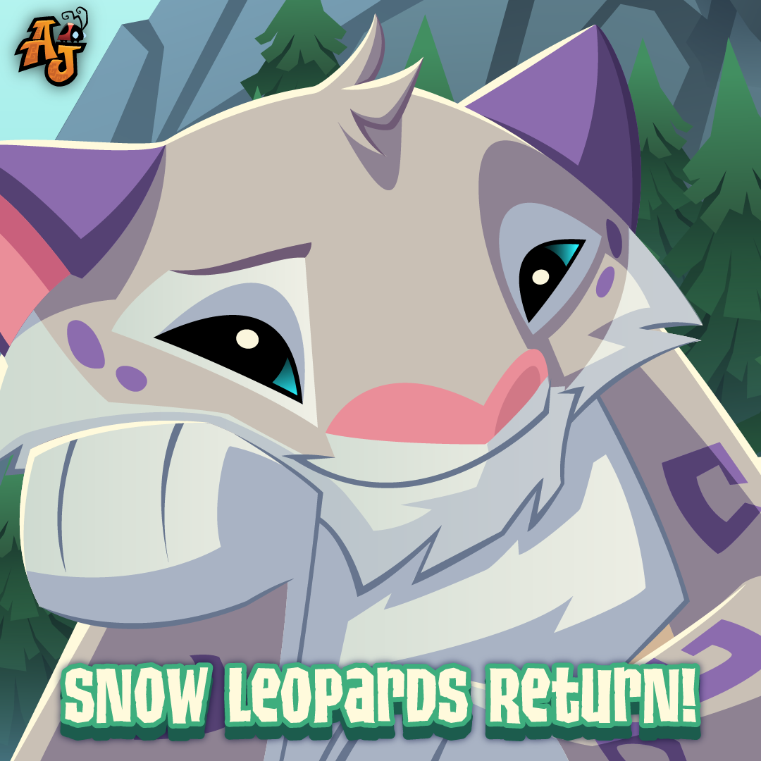 20200227 Snow Leopard Returns-01