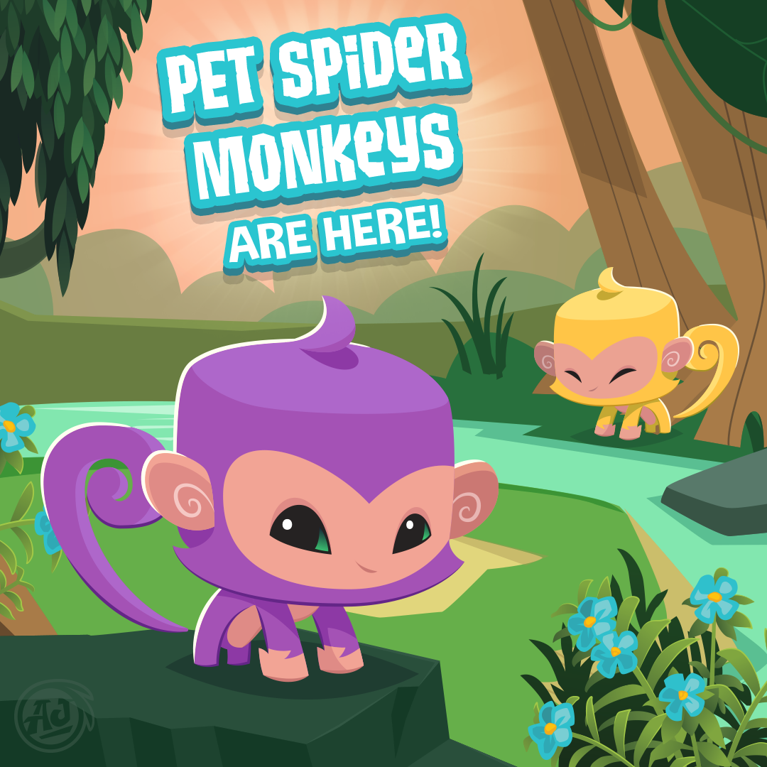 20180905 PW PetSpiderMonkey