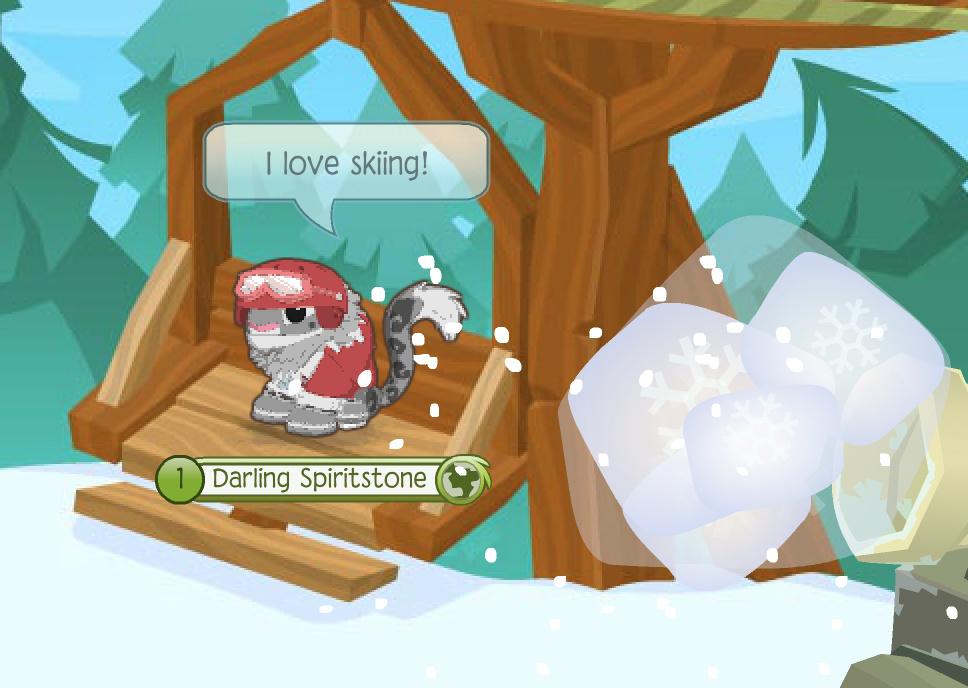 news-crew-favorite-winter-activity