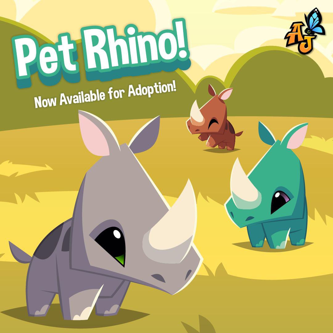 20200108 Pet Rhino-01