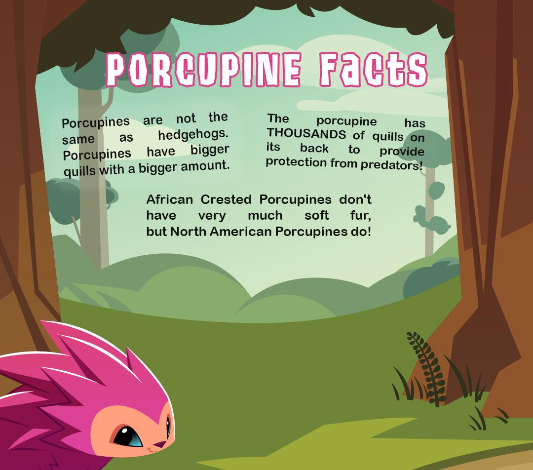 porcupine-calloutfeature3