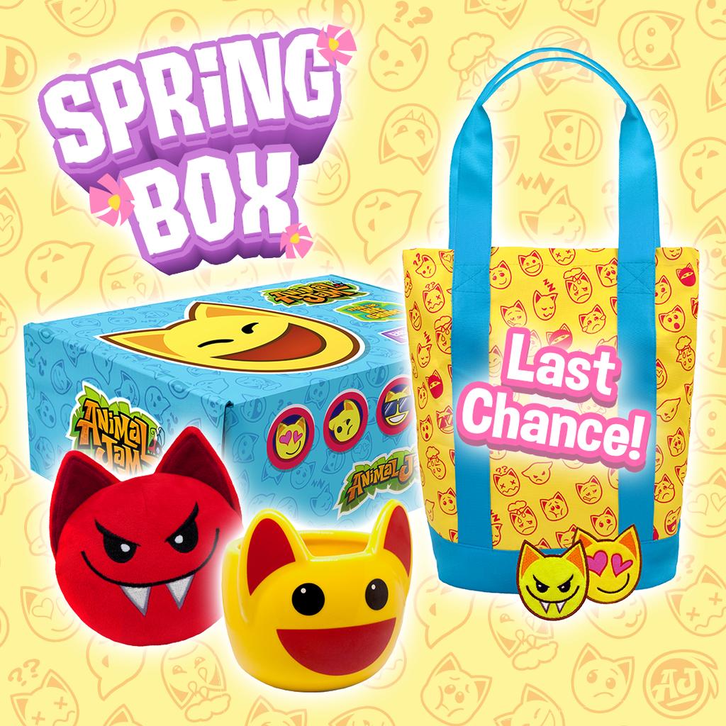 2018 Spring Box Last Chance