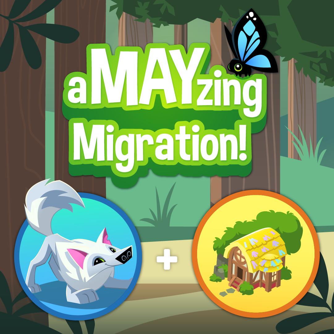 2020 aMAYzing Migration-05