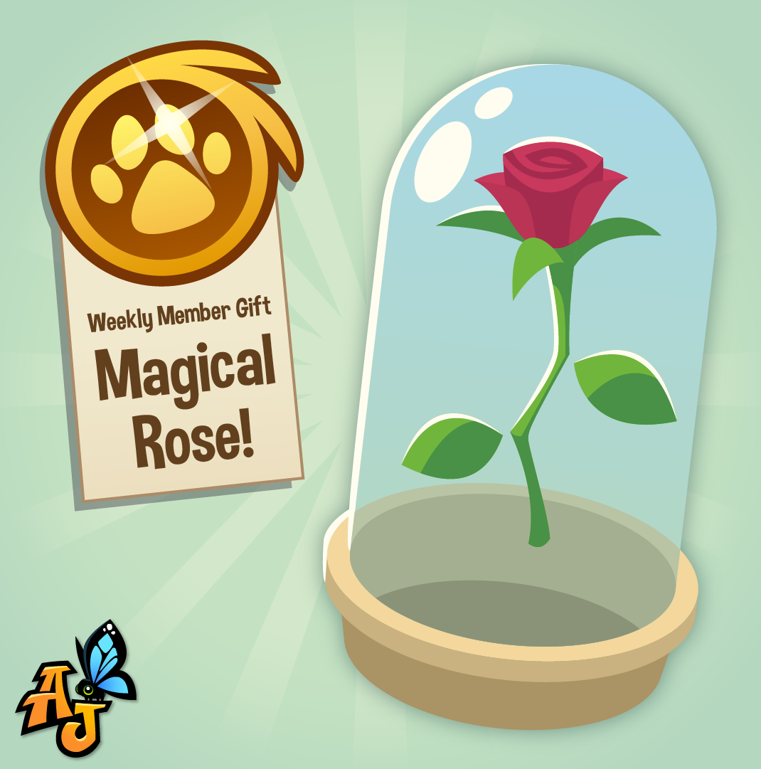 20200527 Magical Rose