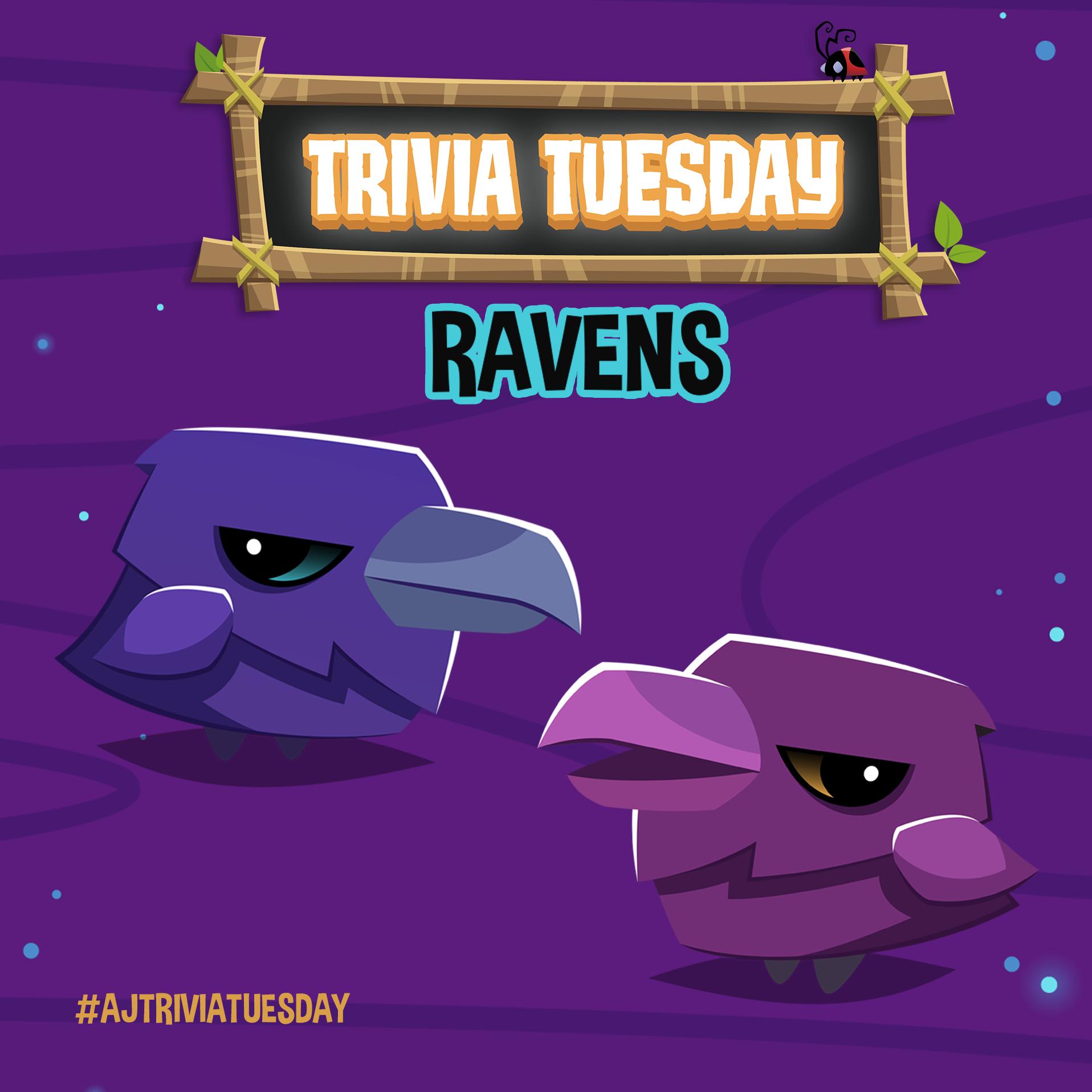 Trivia Tuesday · Ravens SQ