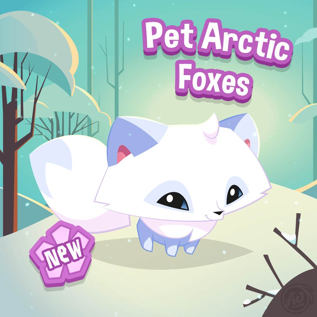 the-arctic-fox-pet-has-arrived-in-play-wild