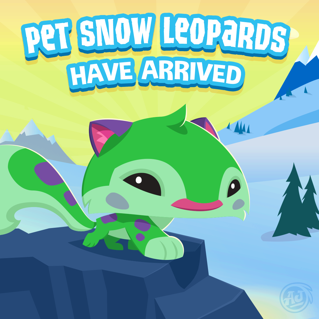 play-wild-pet-snow-leopard
