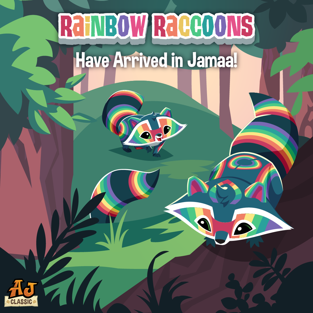 Rainbow Raccoon
