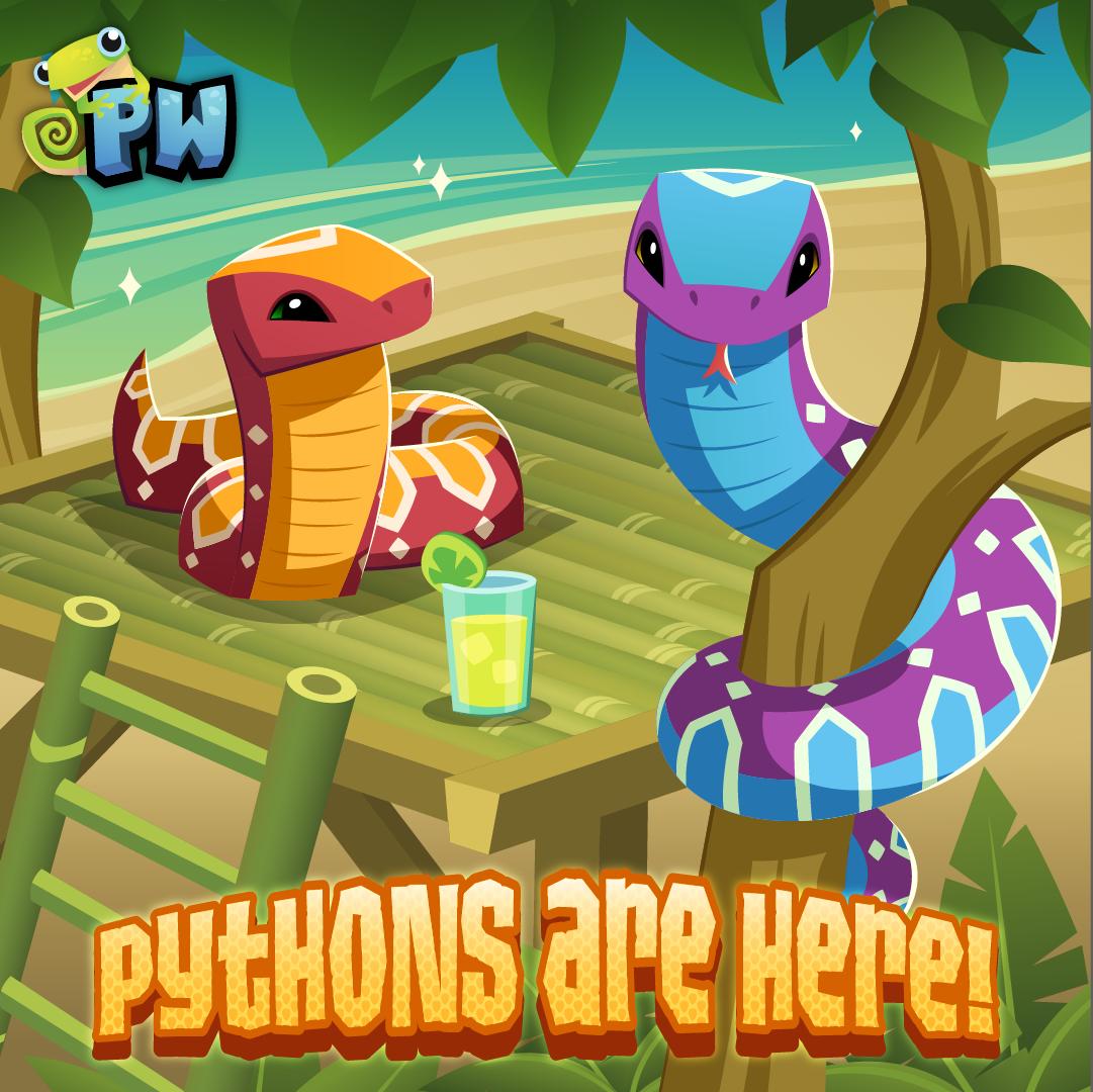 PW Python SOC