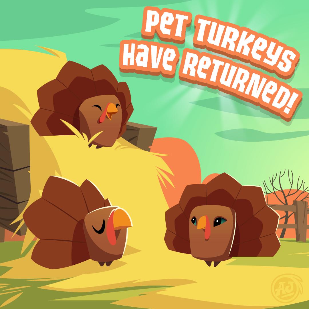 20181104 PetTurkeyReturns