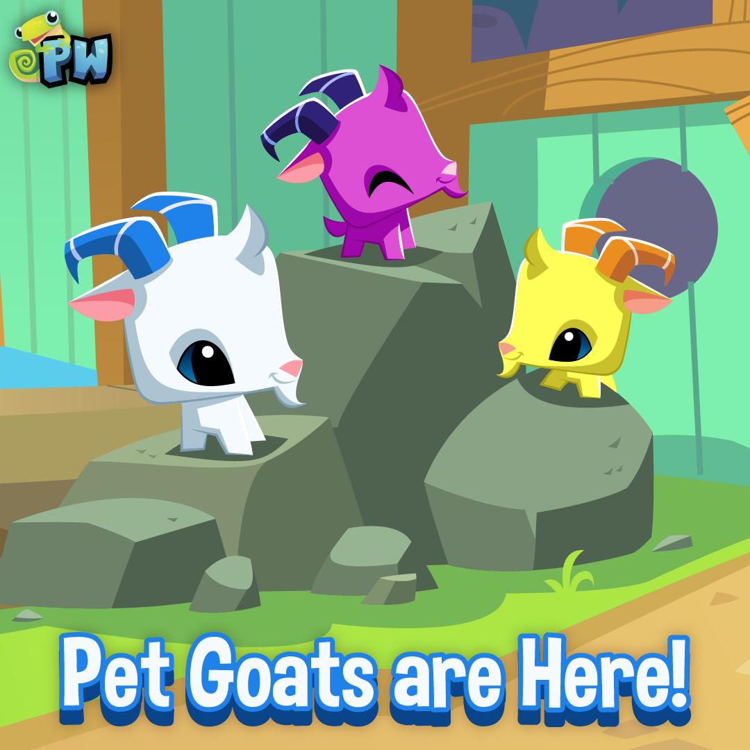 20200318 PW Pet Goat-01