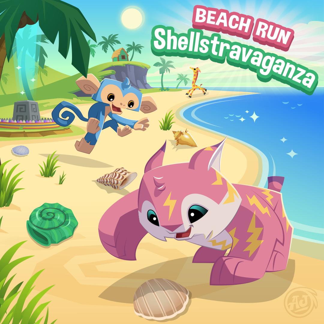 20180805 BeachRun Shellstravaganza