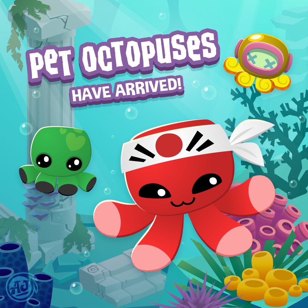 20180315 PetOctopus