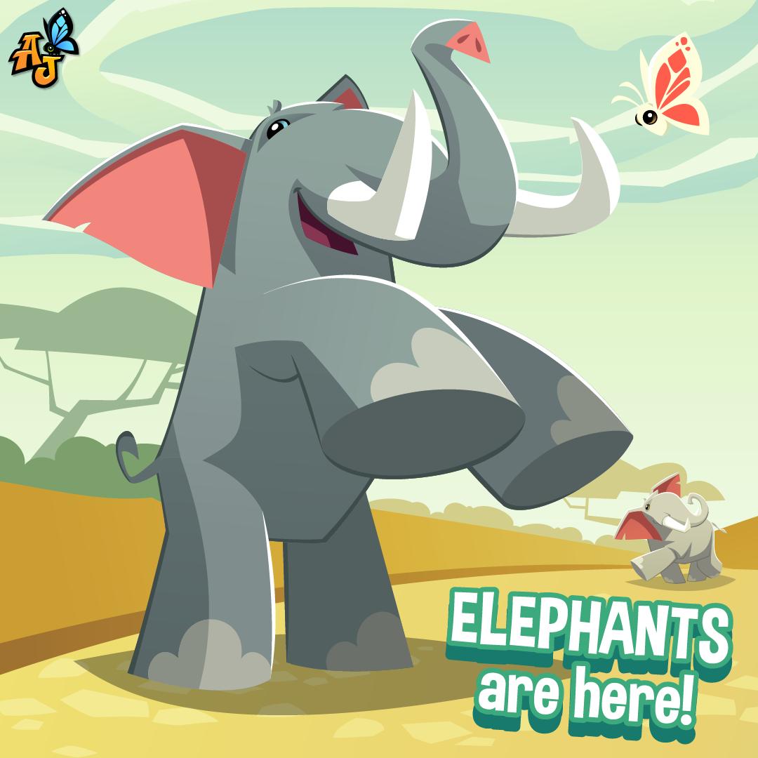 20200701 AJ Elephant-01