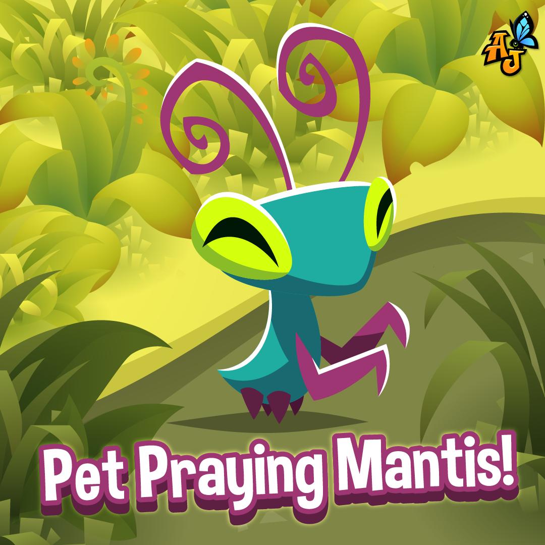 AJ Praying Mantis-01