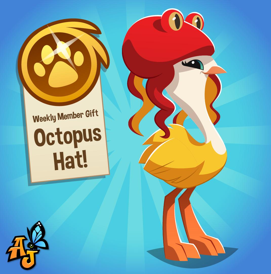 20200708 Octopus Hat