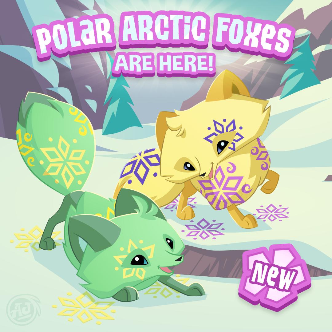 20180303 PolarArcticFox