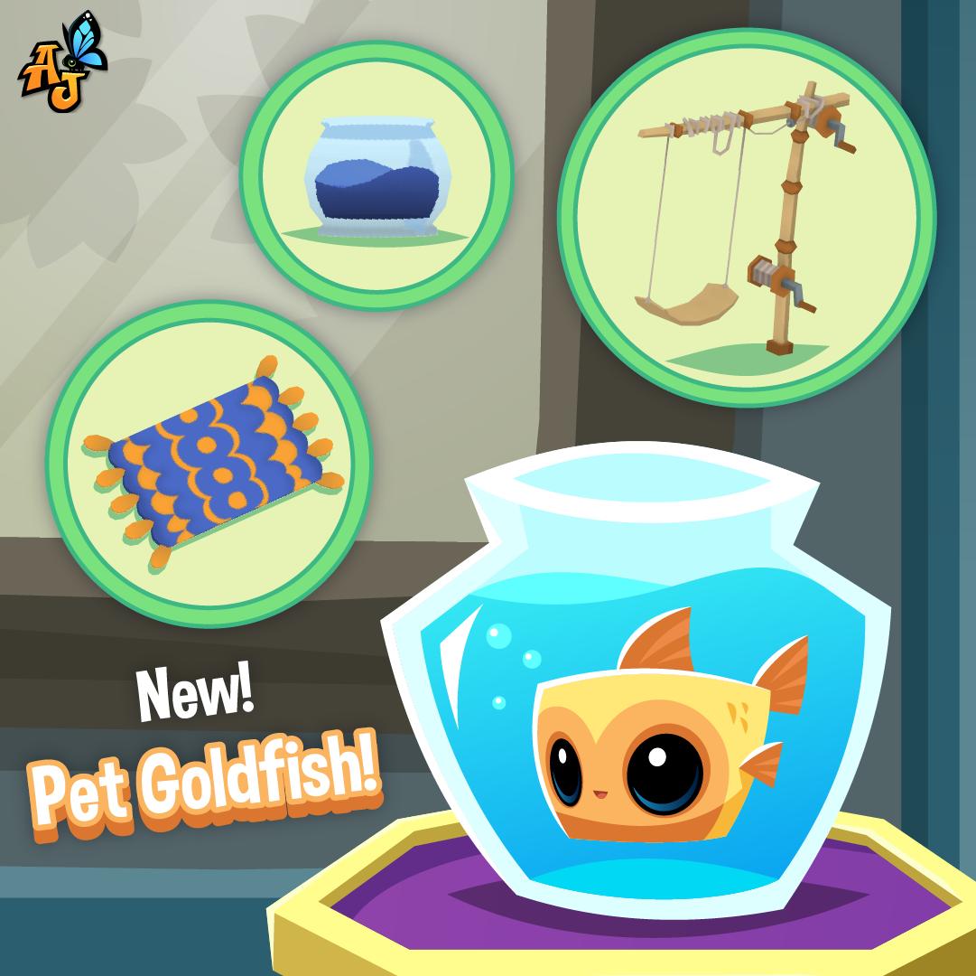 20210310 GoldfishandItems-01