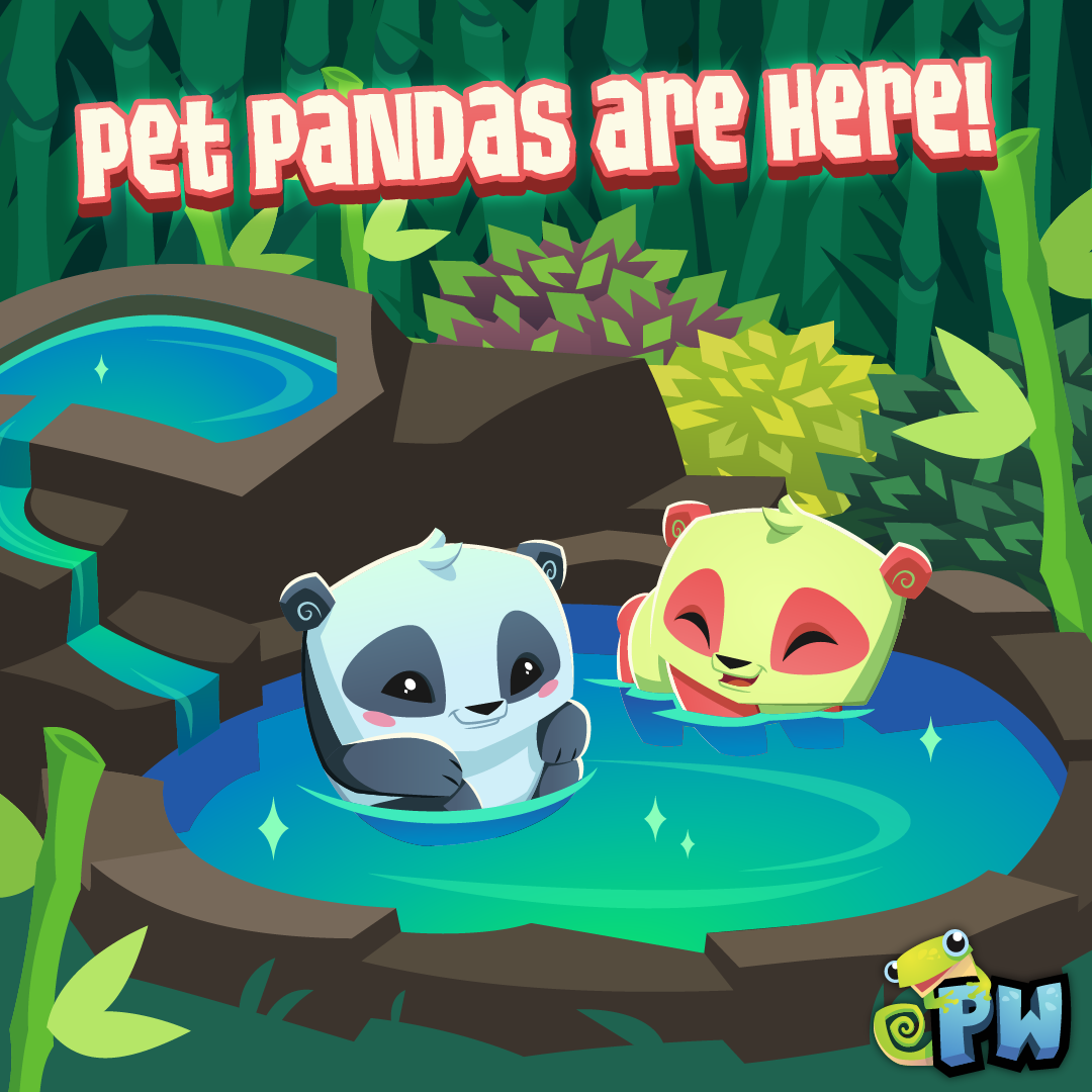 2019 PW PetPanda-01